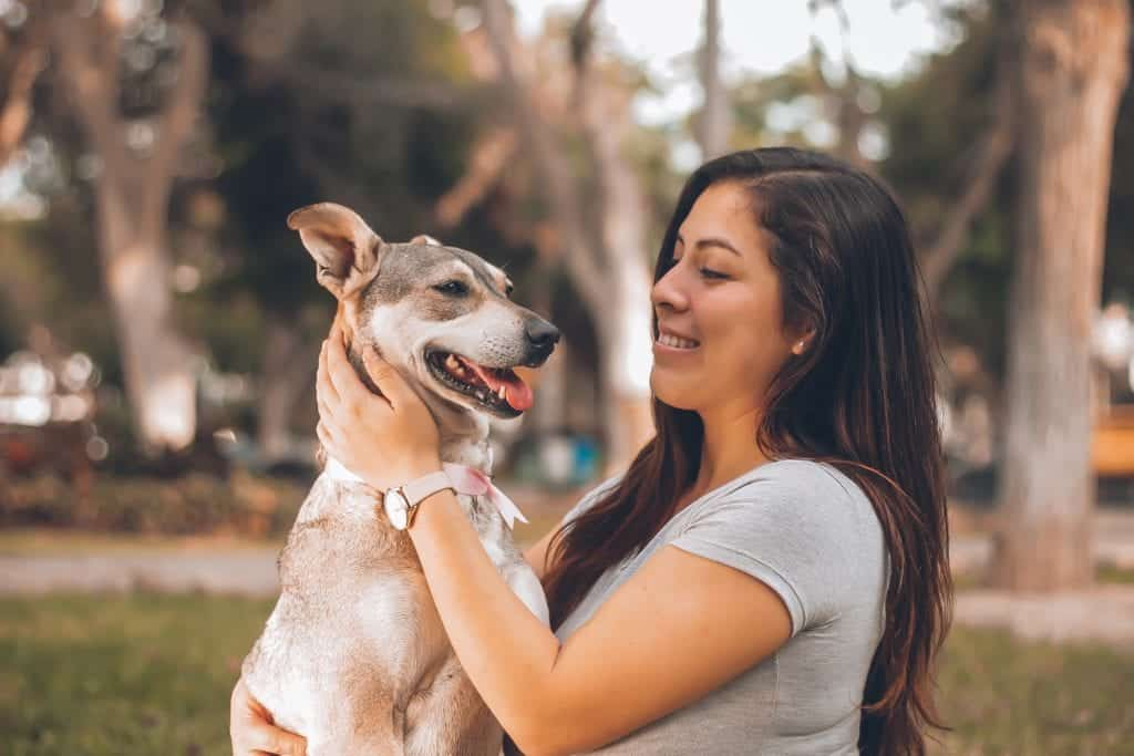 Animal Training Tips: Use Hand Signals To Train Your Dogs