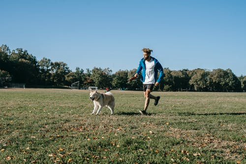A person and a dog in a field